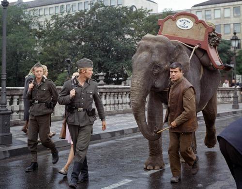 El último obstáculo (Hannibal Brooks, 1969)